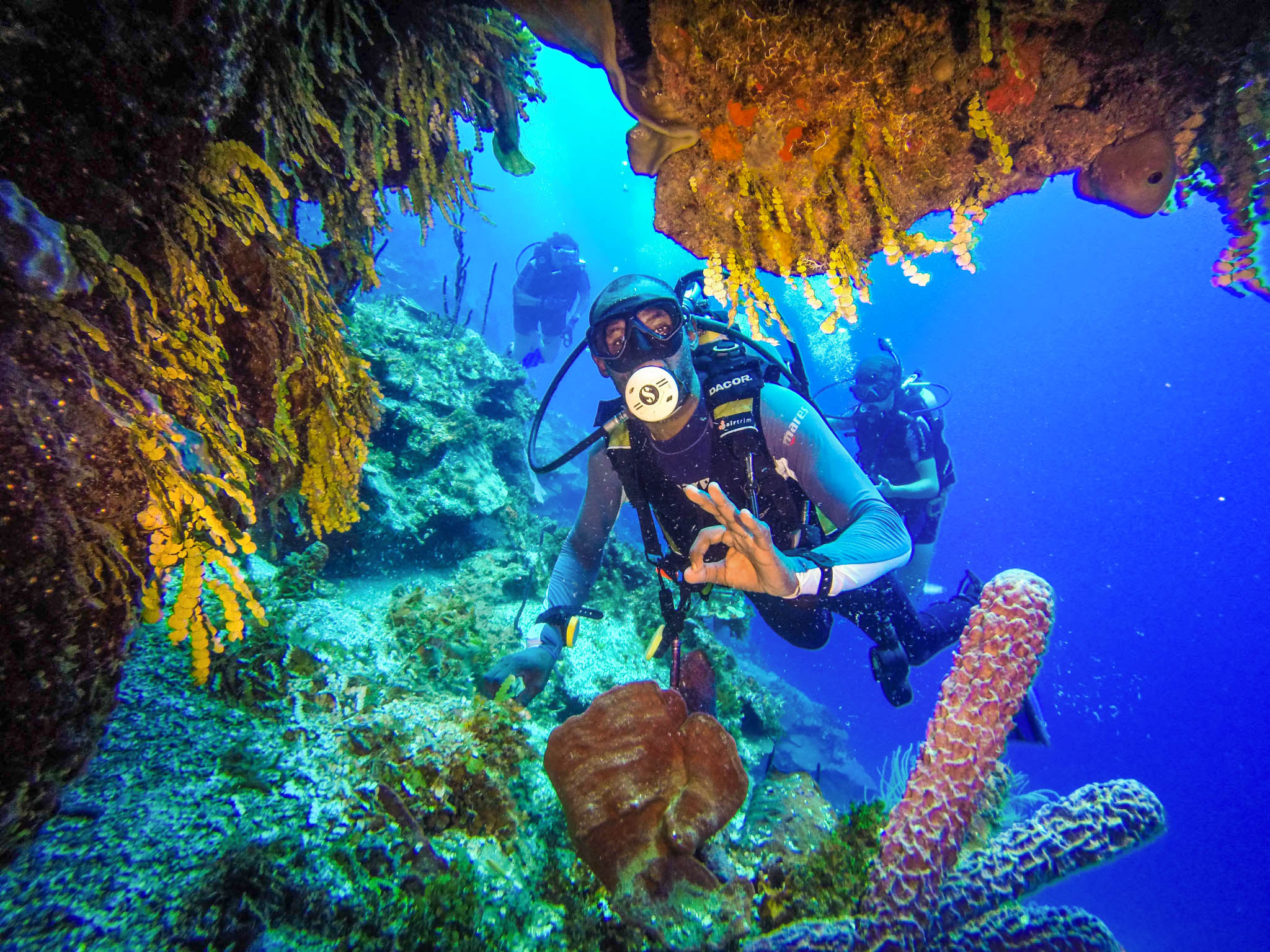Catalina island scuba diving excursion in the dominican republic - Dive in scuba ...