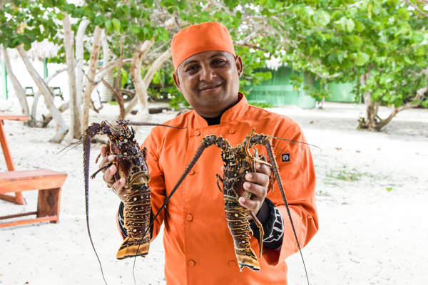 Lobsters for Premier VIP guests