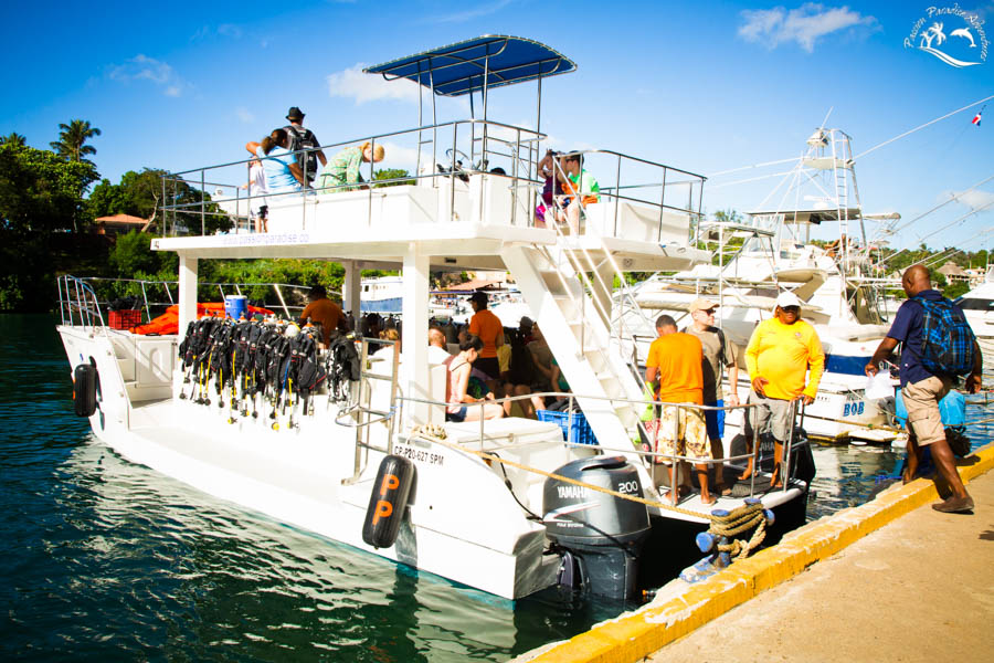 The last guests boarding the boat to Catalina Island