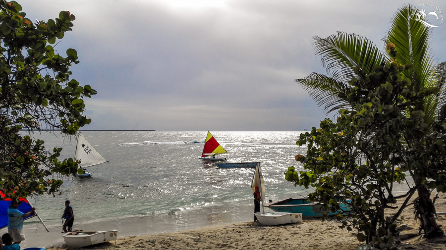 Kids preparing for there international sailing competition in the Dominican Republic heading out to start there race drills